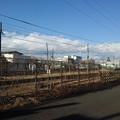 Photos: 矢板駅近くの道(12月30日)