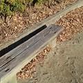 小さな公園のベンチ(12月30日)