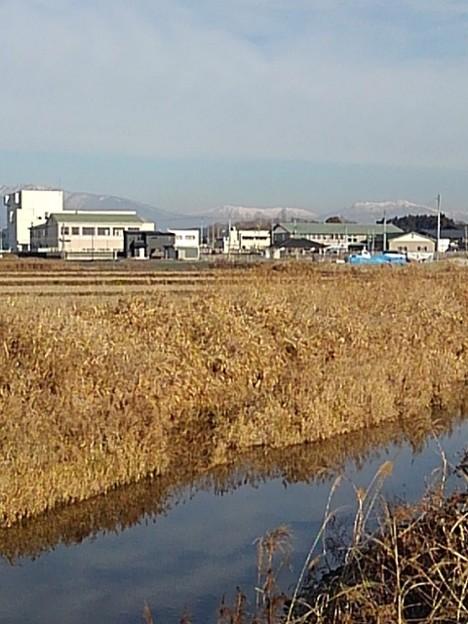 街並みと川と山(1月7日)