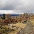 Photos: 石のベンチもある丘の道(1月1日)