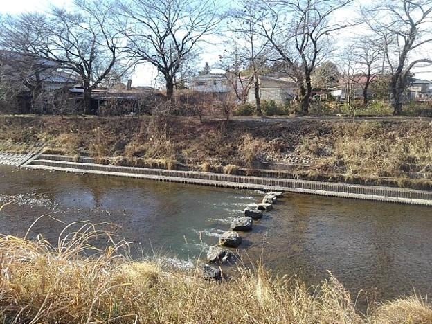 Photos: 川(1月8日)