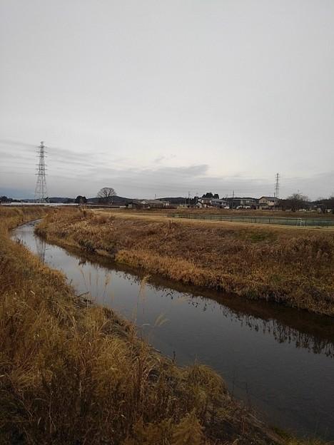 郊外の川(1月12日)