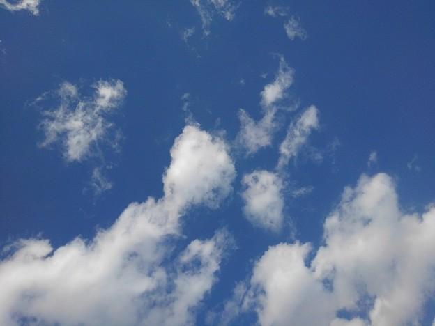 空(1月14日)
