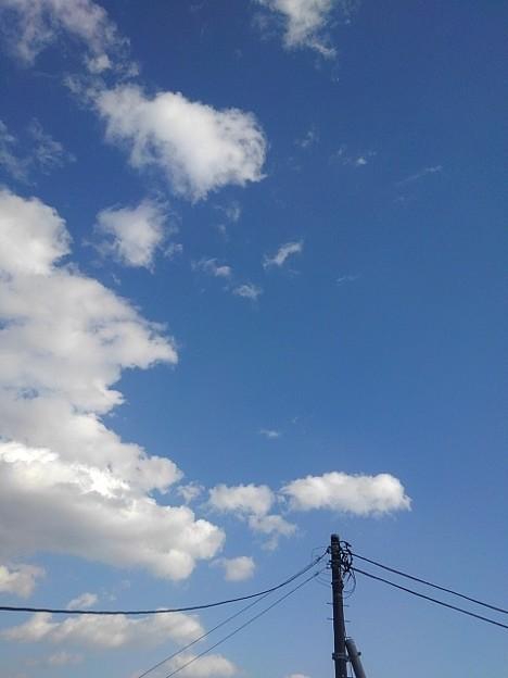 電柱と空(1月14日)