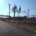Photos: 線路沿いの道(1月18日)