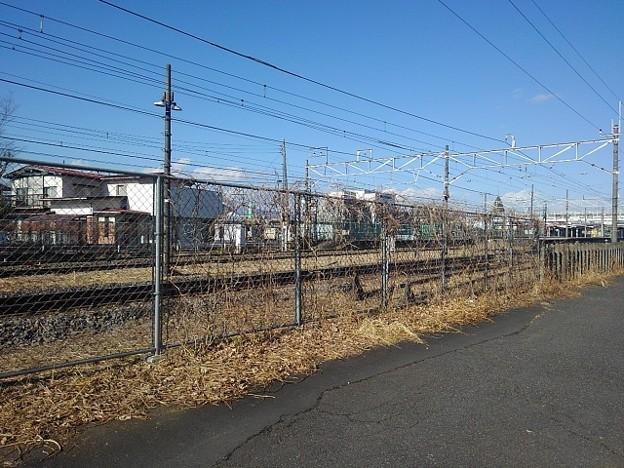 細い道(1月18日)