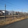 Photos: 細い道(1月18日)