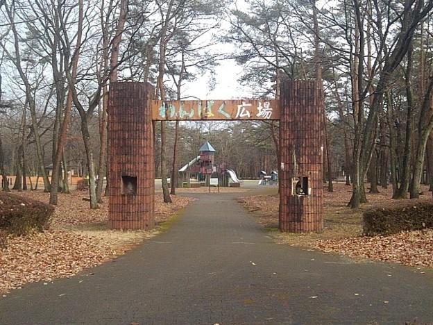 那須野が原公園の遊具広場の入り口(1月16日)
