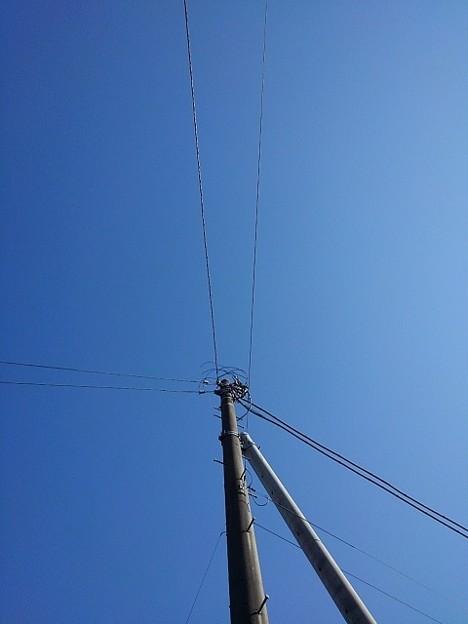 電柱と空(1月26日)