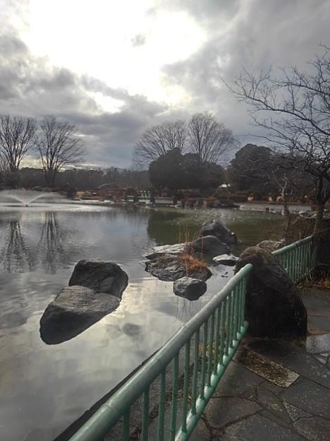 映り込みもある那須野が原公園の池(1月16日)
