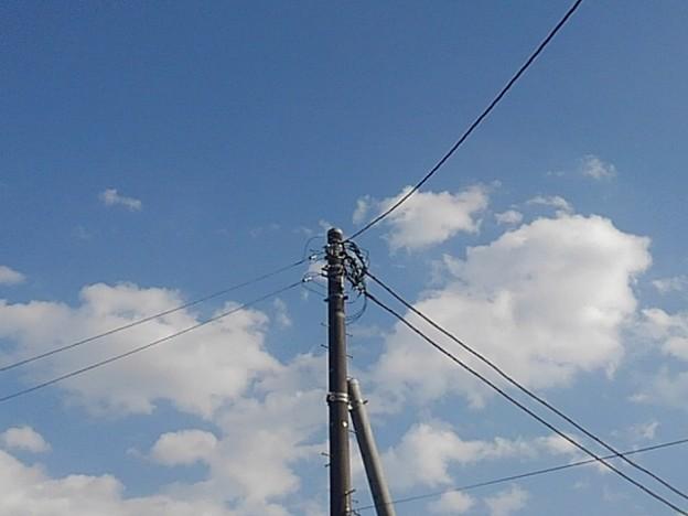 電柱と空(2月7日)