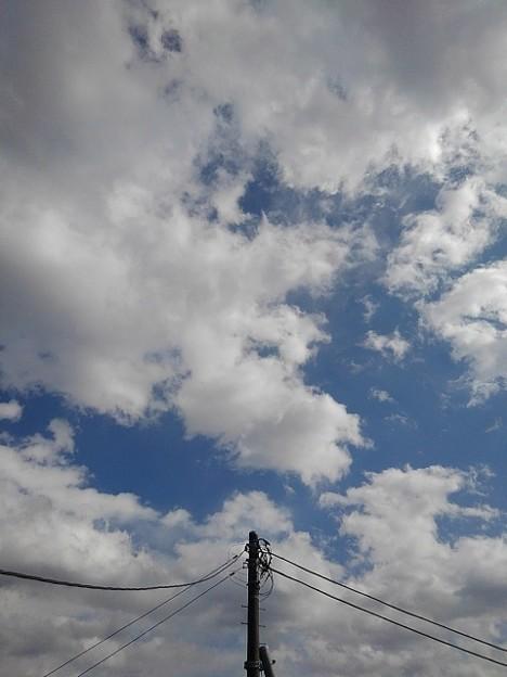 電柱と空(2月8日)