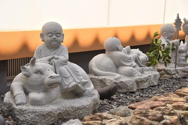 Photos: 三光寺