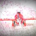 Photos: 飛行機(所沢のお土産)