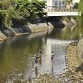 Photos: 松川