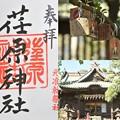写真: 荏原神社の御朱印
