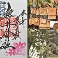 写真: 磐井神社の御朱印(10月)