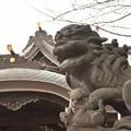 Photos: 磐井神社(12月)