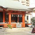 Photos: 麻布氷川神社(12月)