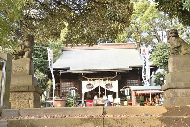 Photos: 太子堂八幡神社(12月)