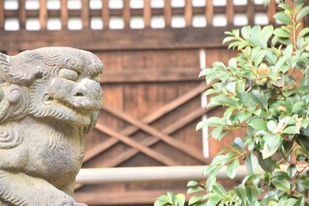 太子堂八幡神社(12月)