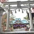 Photos: 多摩川浅間神社(12月)