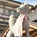 Photos: 笠間稲荷神社