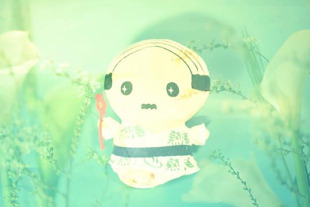 あつお(お土産)