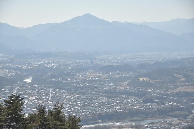 宝登山からの光景