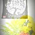 手ぬぐい(長瀞のお土産)