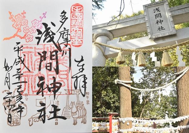 多摩川浅間神社(2月)