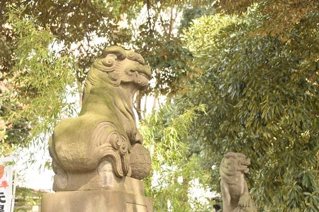 太子堂八幡神社(2月)