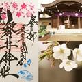 Photos: 磐井神社(桜)