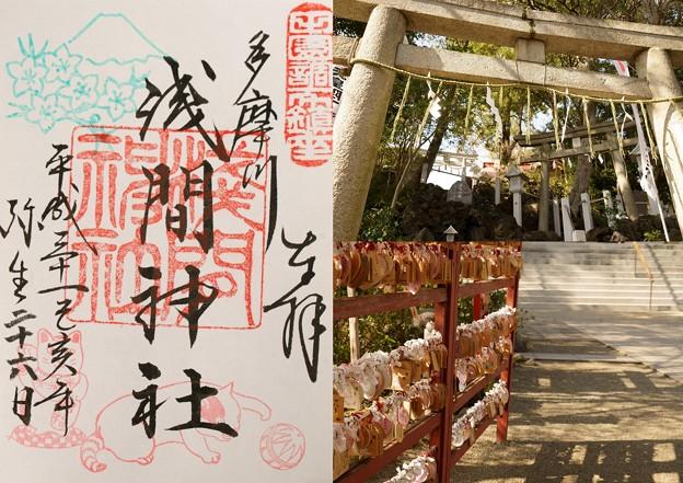 多摩川浅間神社(3月)