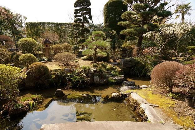 高橋家の庭園