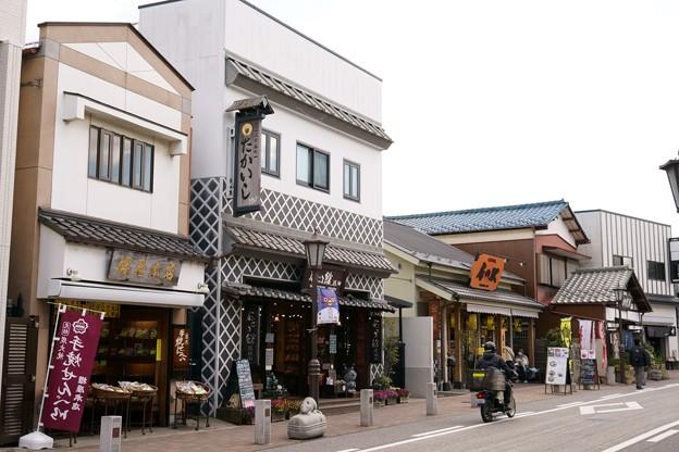成田山新勝寺 参道