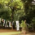 太子堂八幡神社(平成31年4月)