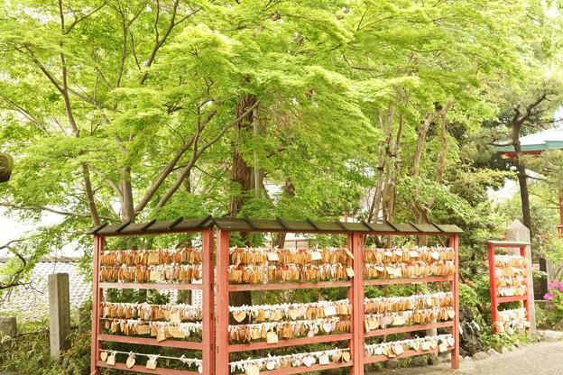 多摩川浅間神社(平成31年4月)