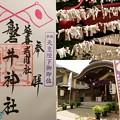 磐井神社(天皇陛下御即位)の御朱印