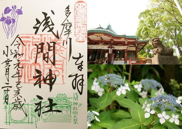 多摩川浅間神社の御朱印(令和元年6月)