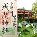 Photos: 多摩川浅間神社の御朱印(令和元年6月)
