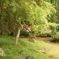 Photos: 喜多院 庭園