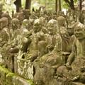 Photos: 喜多院 五百羅漢