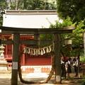 Photos: 三芳野神社