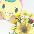 Photos: ときも(お土産)