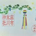 麻布氷川神社の御朱印(七夕)