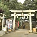 Photos: 太子堂八幡神社(令和元年7月)