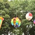 太子堂八幡神社(令和元年7月)