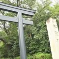 Photos: 松陰神社