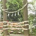 Photos: 多摩川浅間神社(令和元年7月)
